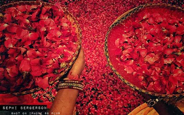 wedding-iphone-photography-sephi-bergerson-2
